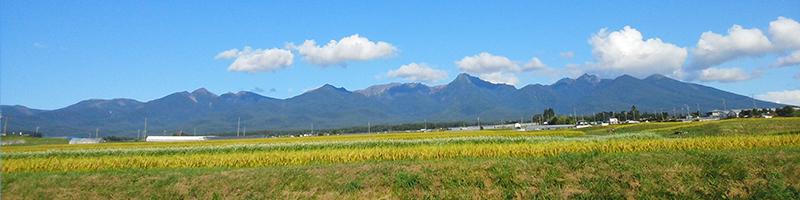 八ヶ岳エリア